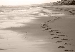 playa castilla